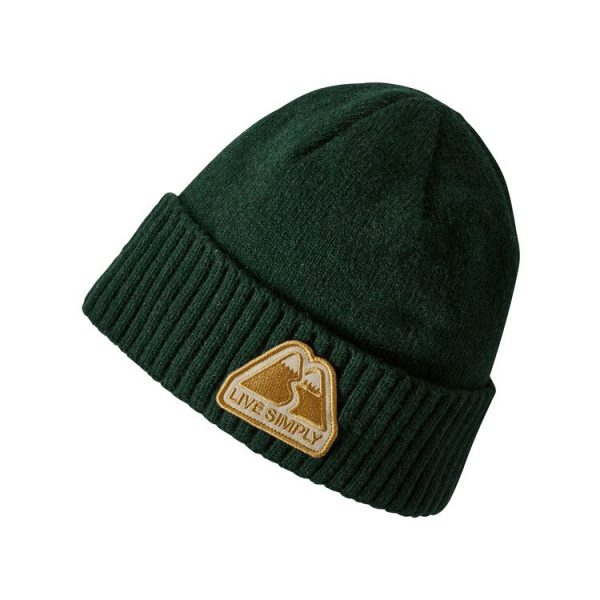 Patagonia Brodeo Beanie berretto risvollto patch live simply verde