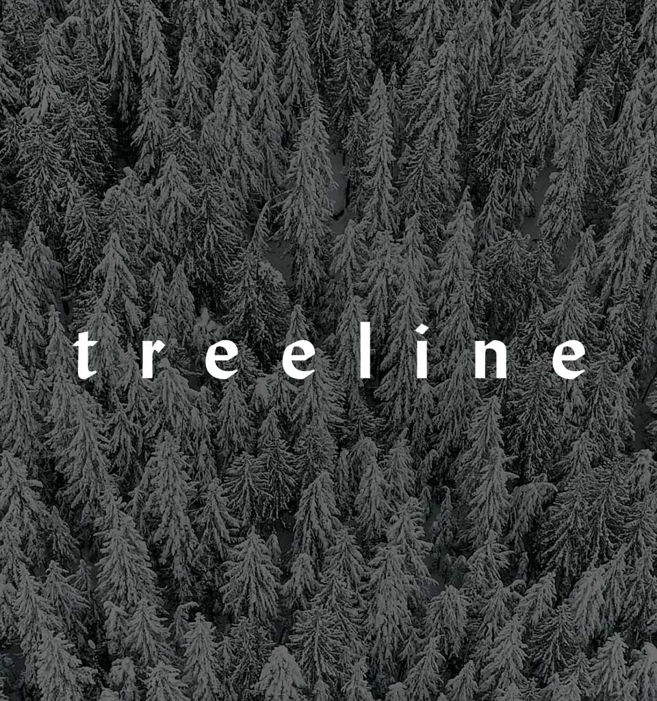 Patagonia Film documentario Treeline