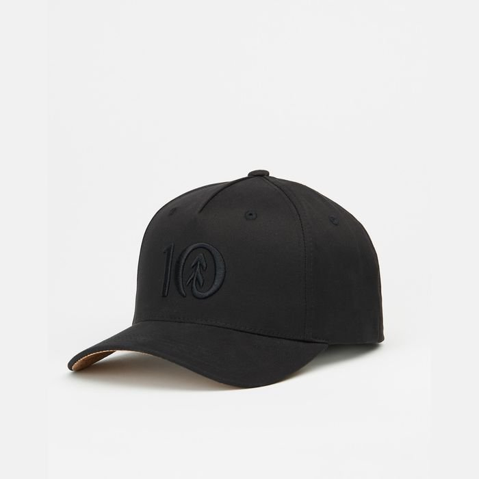 Tentree 5-Panel Altitude Hat cappellino sughero