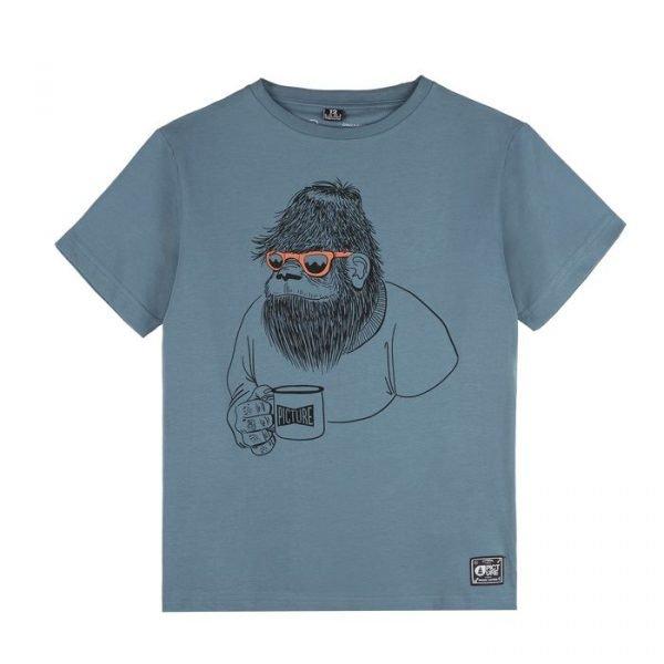 Picture Organic Clothing Melvin tee maglietta bimbo ragazzino grafica gorilla
